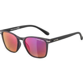 Alpina YEFE, sunčane naočale, siva