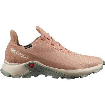 Salomon ALPHACROSS 3 GTX W, ženske patike za trail trčanje